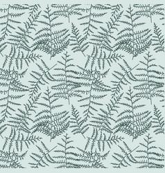 bracken seamless pattern vector image