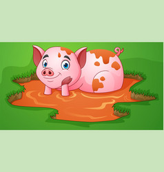 cartoon pig playing a mud puddle in the farm vector image