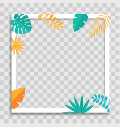 empty photo frame template with tropical palm vector image