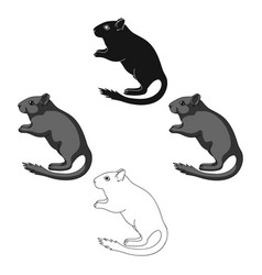 Gray gerbilanimals single icon in cartoonblack vector