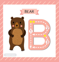 Letter b uppercase tracing standing bear vector