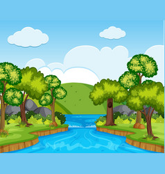 nature scene with trees and river vector image