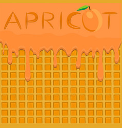 On theme falling runny apricot drip at sugary vector