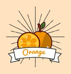 orange whole and slice fruit organic vitamins vector image