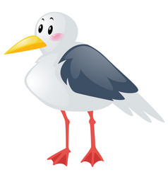 Seagull on white background vector