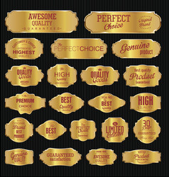 vintage golden frame collection vector image