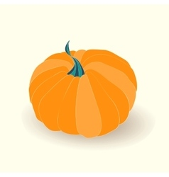Card with pumpkin on white background vector image vector image