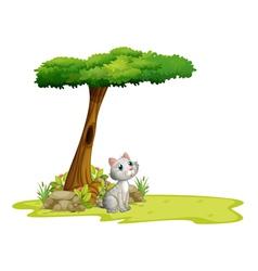 A cat under a tree vector