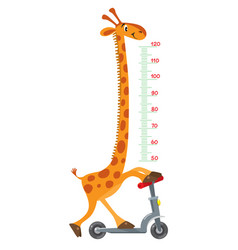 giraffe on scooter meter wall or height chart vector image