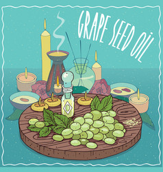 Grape seed oil used for aromatherapy vector