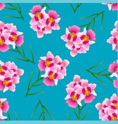 Pink vanda miss joaquim orchid on indigo blue vector