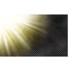 sunlight with morning fog on transparent vector image