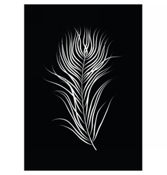 Bird feather on black background vector image