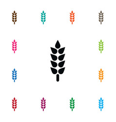 Isolated sheaf icon barley element can be vector