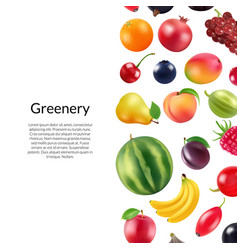 realistic fruits and berries background vector image