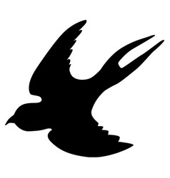 swallow vector image
