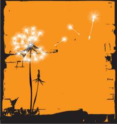 dandelion illustration vector image