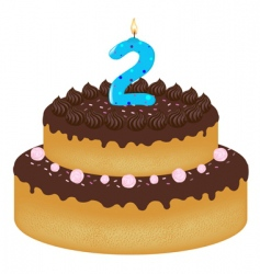 2 years old birthday cake vector image vector image