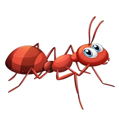 A big red ant vector image
