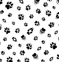 animal footprint pattern vector image