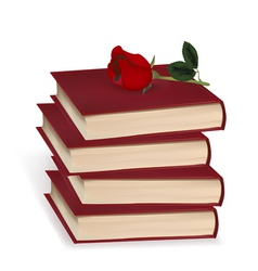 books and red rose vector image