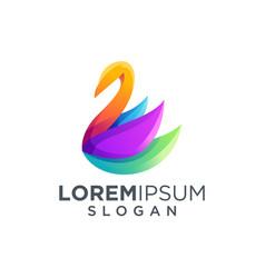 colorful dolphin logo design vector image