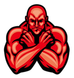 fighter mascot crossing arm vector image