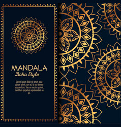 Golden mandala pattern background vector