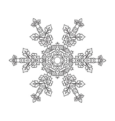 Hand-drawn doodles natural snowflake entangle vector