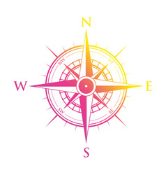 pink and yellow compass vector image