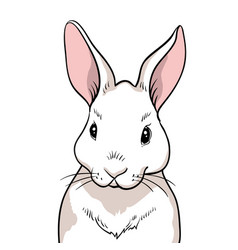 rabbit portrait isolated vector image