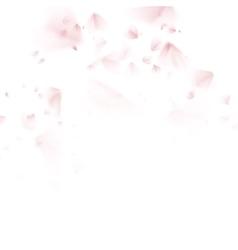 Sakura petal softly EPS 10 vector image
