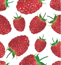 seamless background with raspberry vector image