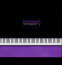 top view piano keys vector image