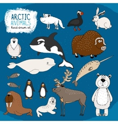 Set of hand-drawn arctic animals vector image vector image