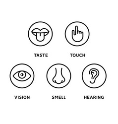 Five human senses vision eye smell nose hearing vector