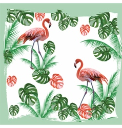 Flamingo birds and palm leaves card vector