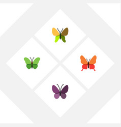 Flat monarch set of violet wing milkweed danaus vector