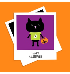 Instant photo with black cat and pumpkin bucket vector