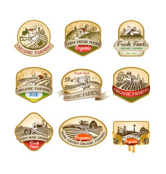 labels with the image of a farms fields and vector image
