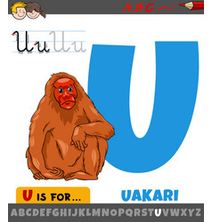 Letter u from alphabet with cartoon uakari animal vector