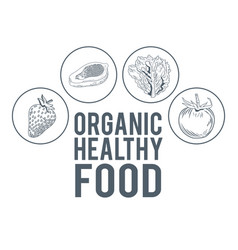 organic healthy food hand draw vector image