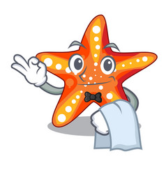 Waiter starfish isolated with in the cartoons vector