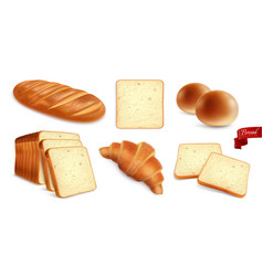 Wheat products realistic set vector