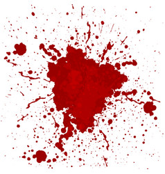 abstract blood splatter isolated vector image vector image