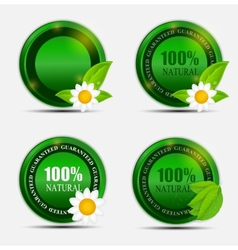 100 Natural Green Label Set vector image vector image