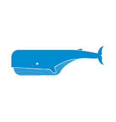 keith isolated large sea mammal on white vector image vector image