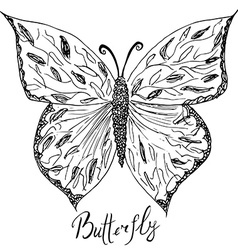 Ornamental hand drawn sketch of Butterfly abstract vector image vector image