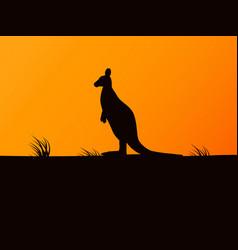 silhouette kangaroo on background sunset vector image
