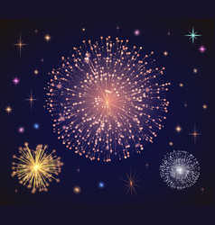 fireworks for holidays celebration in evening vector image